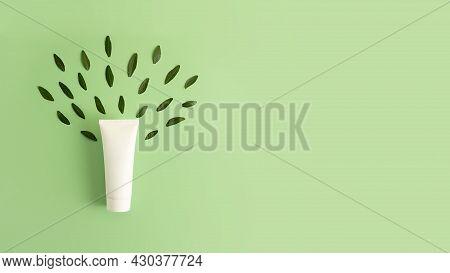 Blank Cosmetics Tube On The Trendy Mint Background.fresh Green Leafs Around, Looks Like Tree.top Vie