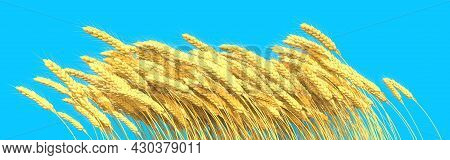Sheaf Of Wheat With Blue Sky - Rural Harvest Isolated. Industrial 3d Illustration