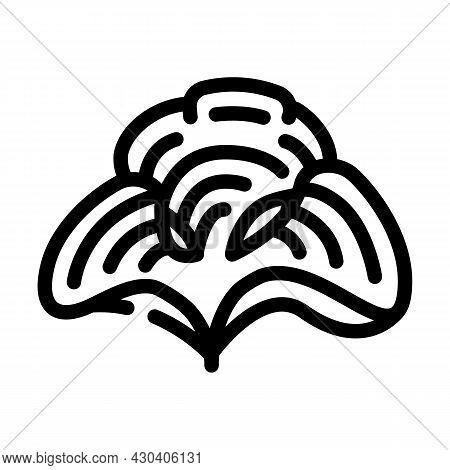 Padina Seaweed Line Icon Vector. Padina Seaweed Sign. Isolated Contour Symbol Black Illustration