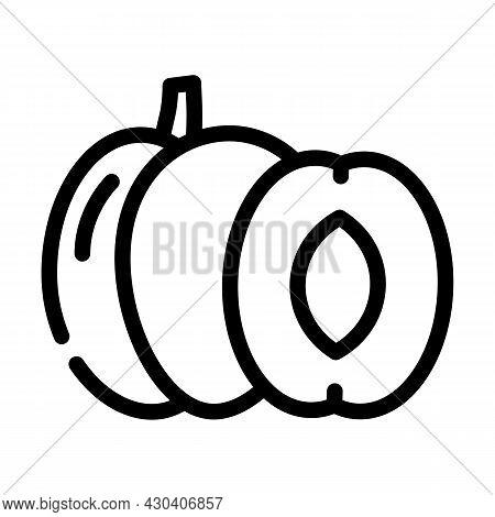 Plum Fruit Line Icon Vector. Plum Fruit Sign. Isolated Contour Symbol Black Illustration