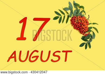 17th Day Of August. Rowan Branch With Red And Orange Berries And Green Leaves And Date Of 17 August