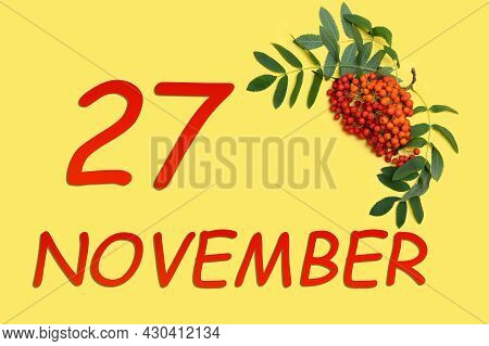 27th Day Of November. Rowan Branch With Red And Orange Berries And Green Leaves And Date Of 27 Novem