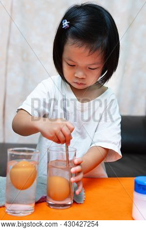 Cute Asian 4-5 Years Girl Is Learning With Science Experiments On Buoyancy With The Floating Eggs In