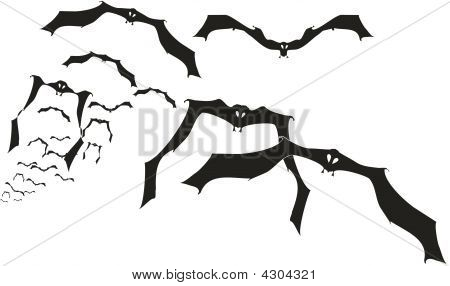 lot of bats flying from distance ... poster