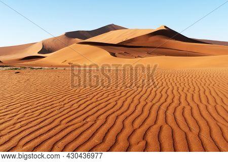 Orange sand dunes and clear sky in Namib desert at Namib-Naukluft National Park of Namibia, Africa. Landscape photography