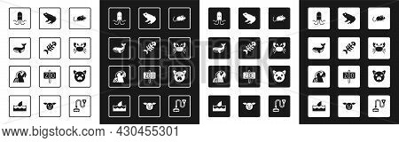 Set Rat, Fish Skeleton, Whale, Octopus, Crab, Frog, Cat And Macaw Parrot Icon. Vector