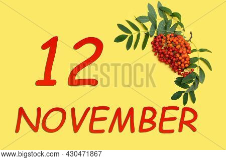 12th Day Of November. Rowan Branch With Red And Orange Berries And Green Leaves And Date Of 12 Novem
