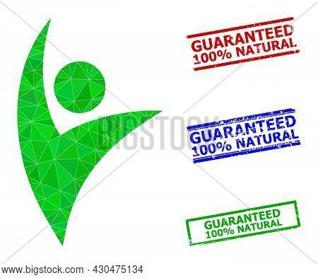 Triangle Eco Man Polygonal Symbol Illustration, And Grunge Simple Guaranteed 100 Percents Natural Ru