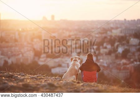 Rear View Of Young Man With Dog At Sunrise. Pet Owner Sitting With His Dog On Hill Against City. Pra