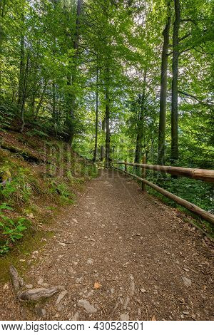 Path Through Park. Beautiful Nature Scenery In Summertime. Wonderful Sunny Weather. Great Day For A