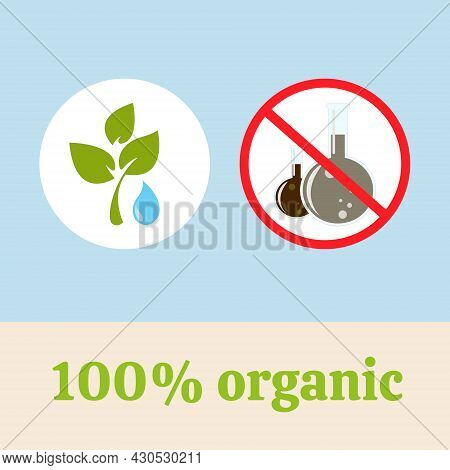 The Illustration Depicts Choosing An Organic, Natural, Vegetable, Ecological, Pure Product. Two Circ