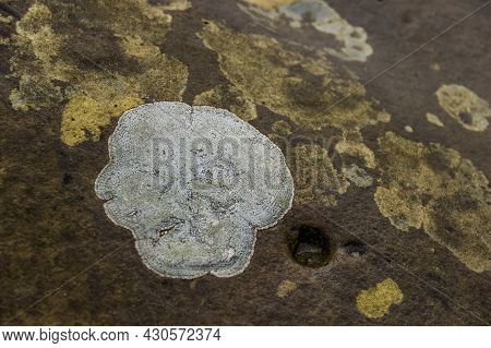 Close-up Of A Stone Texture