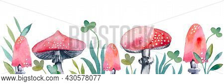 Banner Pattern With Watercolor Red Poisonous Mushrooms. Set Of Amanita Fly Agaric Mushrooms Isolated