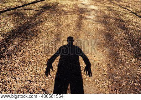 Shadow Of An Aggressive Person. Maniac Awaiting A Victim In A City Park. Autumn Season.