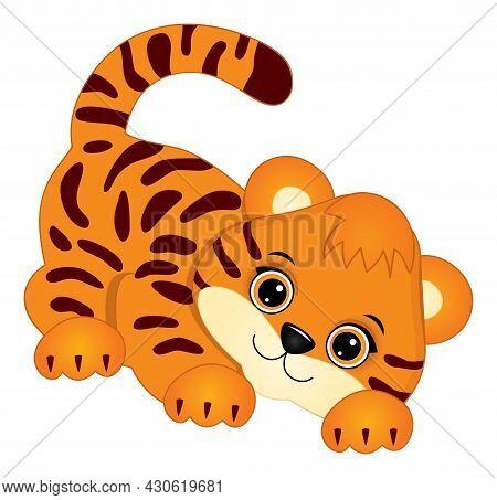 Cute Baby Tiger Sneaking. Vector Tiger. Baby Tiger Vector Illustration