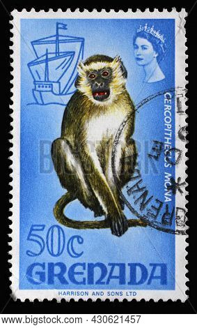ZAGREB, CROATIA - SEPTEMBER 18, 2014: Stamp printed in Grenada shows Mona Monkey (Cercopithecus mona), Series Flora and Fauna Definitives 1968-1971, circa 1968