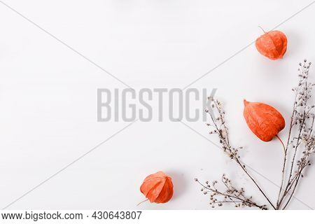 Autumn Composition Made Of Orange Physalis And Dry Autumn Twigs On White Background. Autumn, Fall Co