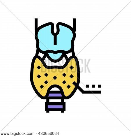 Thyroid Gland Endocrinology Color Icon Vector. Thyroid Gland Endocrinology Sign. Isolated Symbol Ill