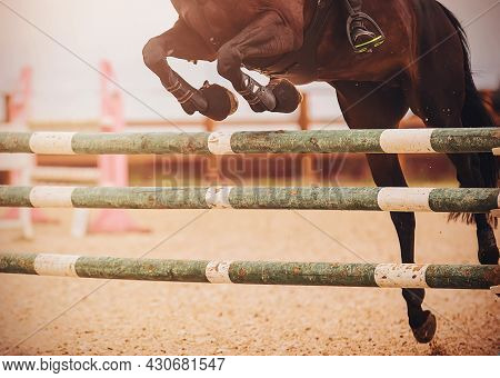 A Dark Bay Racehorse With A Rider In The Saddle Jumps Over A Green Wooden Barrier At A Show Jumping
