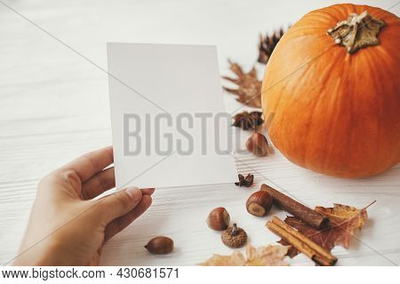 Hand Holding Blank Card On Background Of Pumpkin, Autumn Leaves, Anise, Acorns On White Wood. Autumn