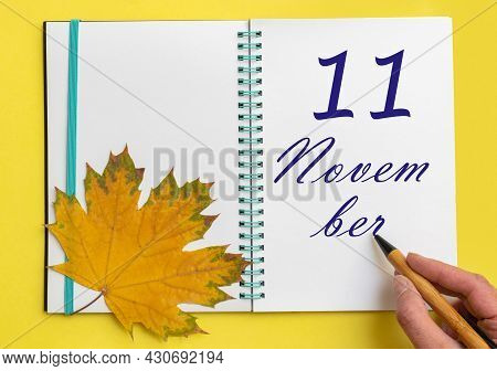 11th Day Of November. Hand Writing The Date 11 November In An Open Notebook With A Beautiful Natural