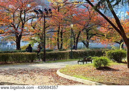 Osaka, Japan - November 22, 2016: People Visit Autumn Leaves In Minami Temma Park In Osaka, Japan. O