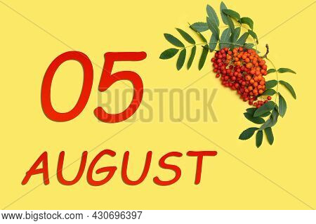 5th Day Of August. Rowan Branch With Red And Orange Berries And Green Leaves And Date Of 5 August On