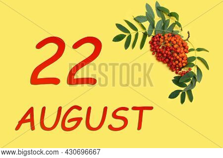 22nd Day Of August. Rowan Branch With Red And Orange Berries And Green Leaves And Date Of 22 August