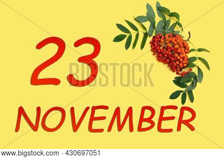 23rd Day Of November. Rowan Branch With Red And Orange Berries And Green Leaves And Date Of 23 Novem
