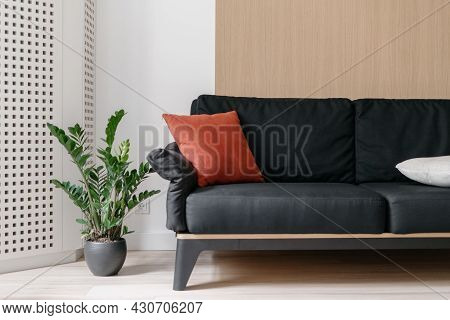 Sofa At Living Room Interior, Home Design. Black Couch At Scandinavian Apartment, Modern House Decor