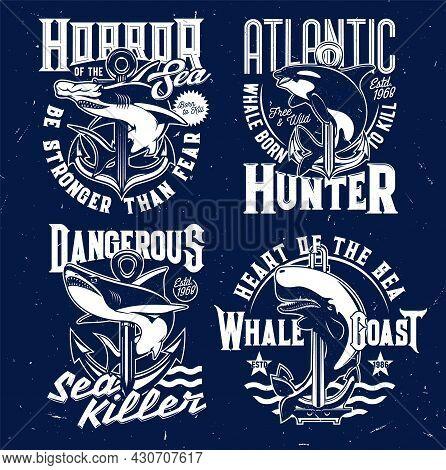 Nautical T-shirt Prints, Anchor And Marine Sea Waves Vector Emblems. Shark And Killer Whale Ocean Fi