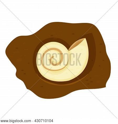 Amonite Shell Fossil, Prehistoric Creature In Cartoon Style Isolated On White Background. Science Sp
