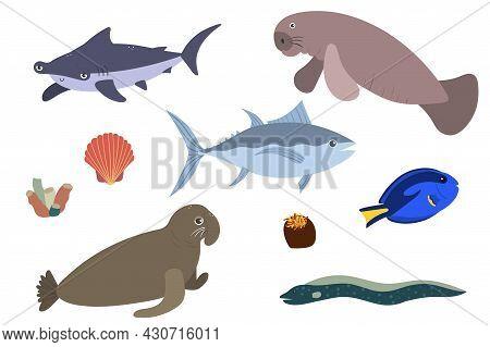 Set Of Sea Animals - Hummerhead Shark Tuna Sea Elephant Surgeonfish Manatees. Undersea World Habitan