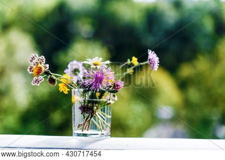 Wildflowers In Glass Outside. Bouquet Of Summer Wild Flowers Multicolored Herbs In Vase On Green Bac