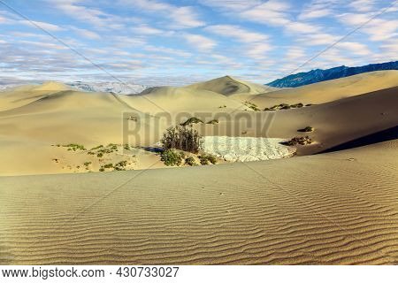 The gentle slopes of the sand dunes are covered with light ripples. Picturesque part of Death Valley in California - Mesquite Flat Sand Dunes. USA. Concept of active, ecological and photo tourism