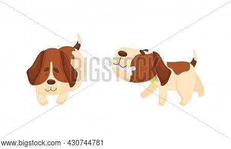 Cute Funny Beagle Dog Set. Cute Playful Pet Animal Cartoon Vector Illustration