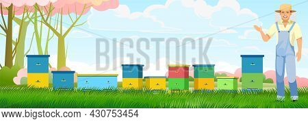 Apiary. Bee Hive In A Summer Meadow. Beekeeper Horizontal Illustration With Beehive. Among The Flowe