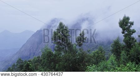 Tropical Cloud Forest (rainforest) On The Slope Of Palani Hills (western Ghats Mountains) In Monsoon