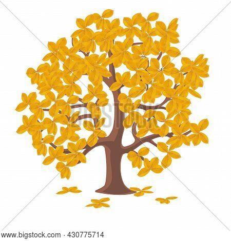 Beautiful Beautiful Autumn Tree, Great Design For Any Purposes.