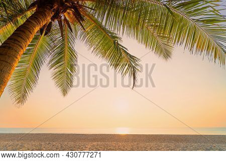 Palm Tree At Tropical Beach On Sunset Sky Abstract Background. Summer Vacation And Nature Travel Adv