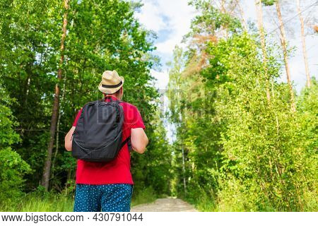 Traveler Young Man Walking On Path In The Summer Forest.back View Of Young Man With Backpack Traveli