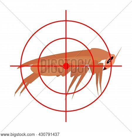 Cockroach And Aim, Target. Side View. Insect Protection Concept. Isolated Vector Illustration On Whi