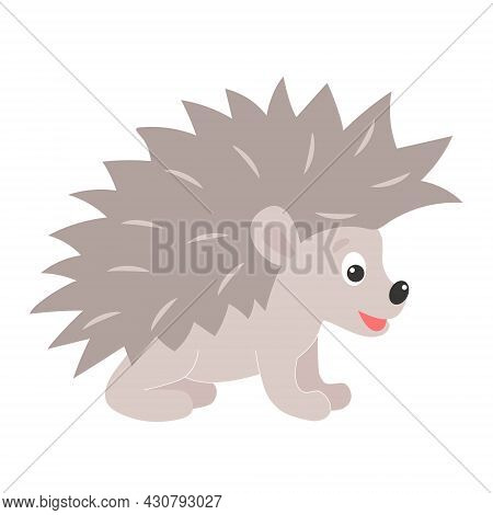 Forest Animal Hedgehog Vector Illustration. Funny Cute Hedgehog, Isolated Flat Object.
