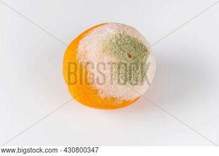 Moldy Old Orange Isolated On White Background.