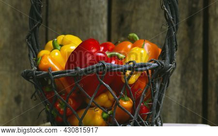 Ripe Red, Yellow And Orange Bell Peppers In A Basket