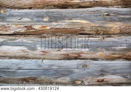 A Fragment Of A Log Wall, Horizontally Arranged Logs With Traces Of Twigs With Dried Gray Moss Which