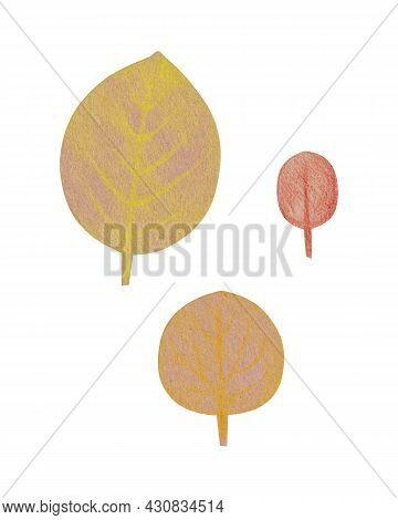 Hand Drawn Yellow Oval Leaves With A Rough Texture. Isolated Plant Drawing With Colored Pencils On C
