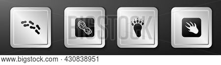 Set Human Footprints Shoes, , Bear Paw And Alligator Crocodile Icon. Silver Square Button. Vector