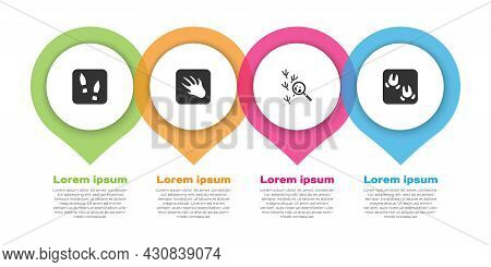 Set Human Footprints Shoes, Alligator Crocodile, Bird And Wild Boar Paw. Business Infographic Templa