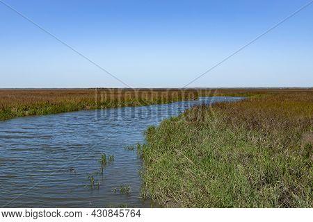 Intracoastal Waterway Salt Marsh, Coast Of South Carolina, Marsh Grass And Water, Horizontal Aspect